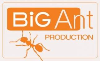 Big Ant Production