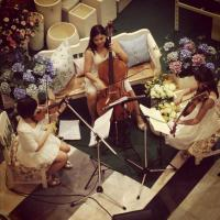 Music4weddingthailand